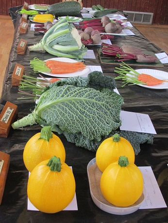 Vegetables at the Summer Show