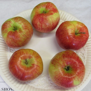 A plate of red apples