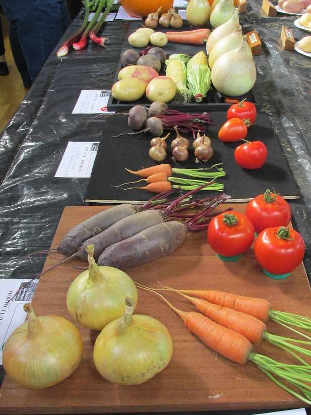 Vegetables at the Autumn Show