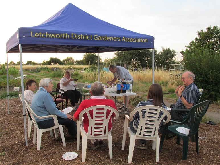Members enjoying the plot to plate evening