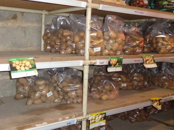 Bagged up potatoes on the shelf