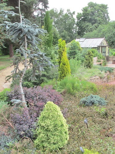 A view of the sensory garden with greenhouse in the background