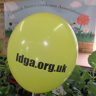 A yellow balloon with ldga.org.uk printed on it