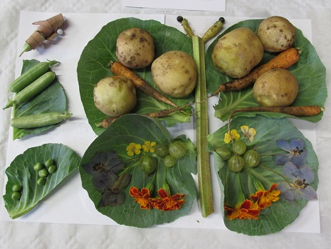 A display of produce from Northfields School Gardening Club depicting the life cycle of the butterfly