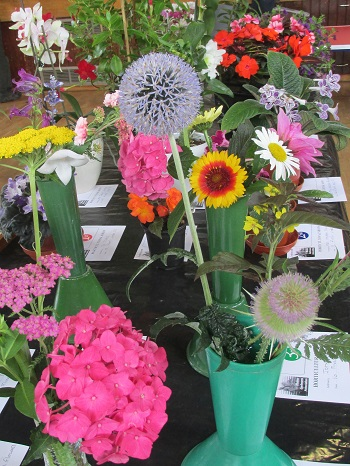 A display of mixed summer flowers