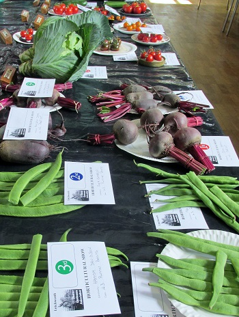 Vegetable displays with runner beans and beetroot