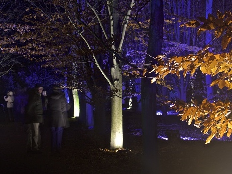 Winter lights at Anglesey Abbey