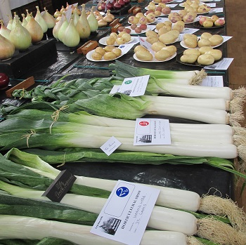 Leeks and potatoes