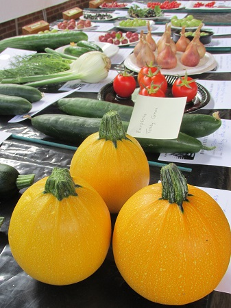 A display veg