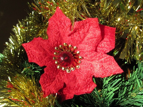 Poinsettia Light