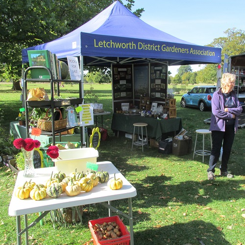 "Our Wimpole Hall stall"" width="