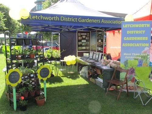 LDGA stall at Armed Forces Day on Broadway Gardens