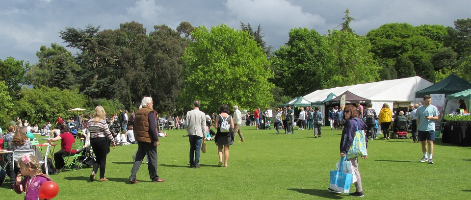An overview of the plant festival at Cambridge Botanical Gardens
